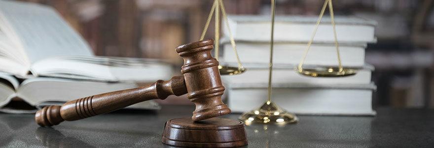 Domaine du droit